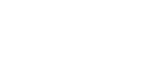 Logo-HPI-Rise-White